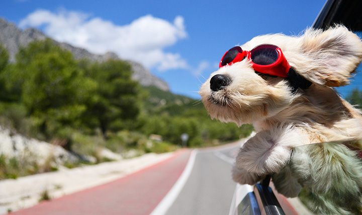 Perth Weather Finally Warming Up – Is your Car Ready?